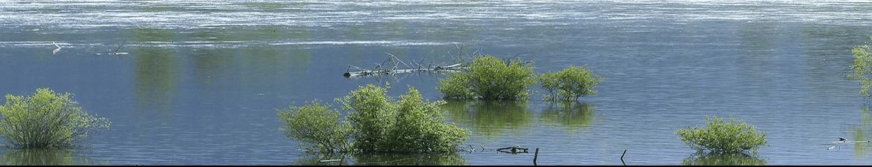 Loiret & Seine-et-Marne en alerte rouge crues