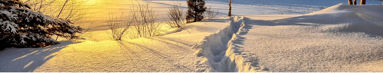 Dépression Gabriel : où va-t-il neiger ce soir ?