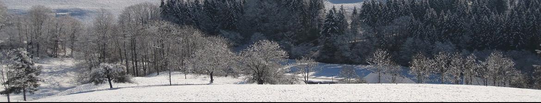 La neige s'est invitée dans le Sud-Est ce mercredi !