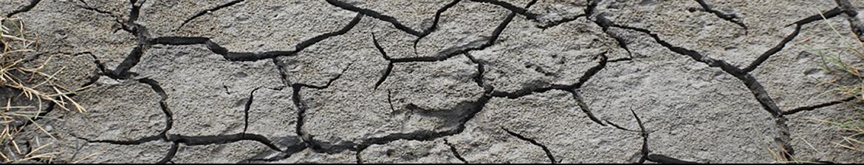 Une sécheresse record frappe le sud-est de la France